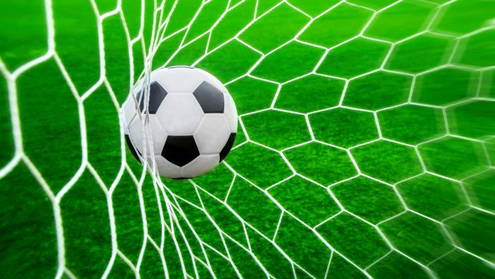 Sport_Ball_and_net_for_football_080422_